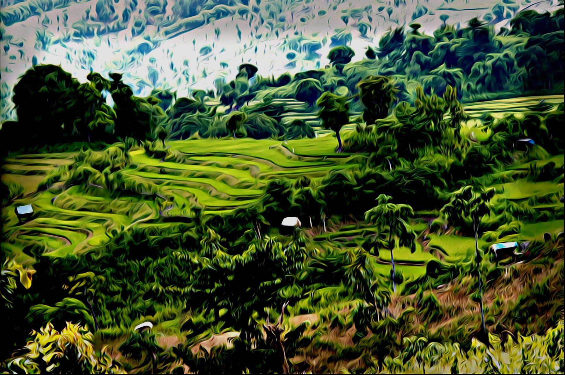 Keindahan Bima: Sambori dan Negeri di Atas Awan