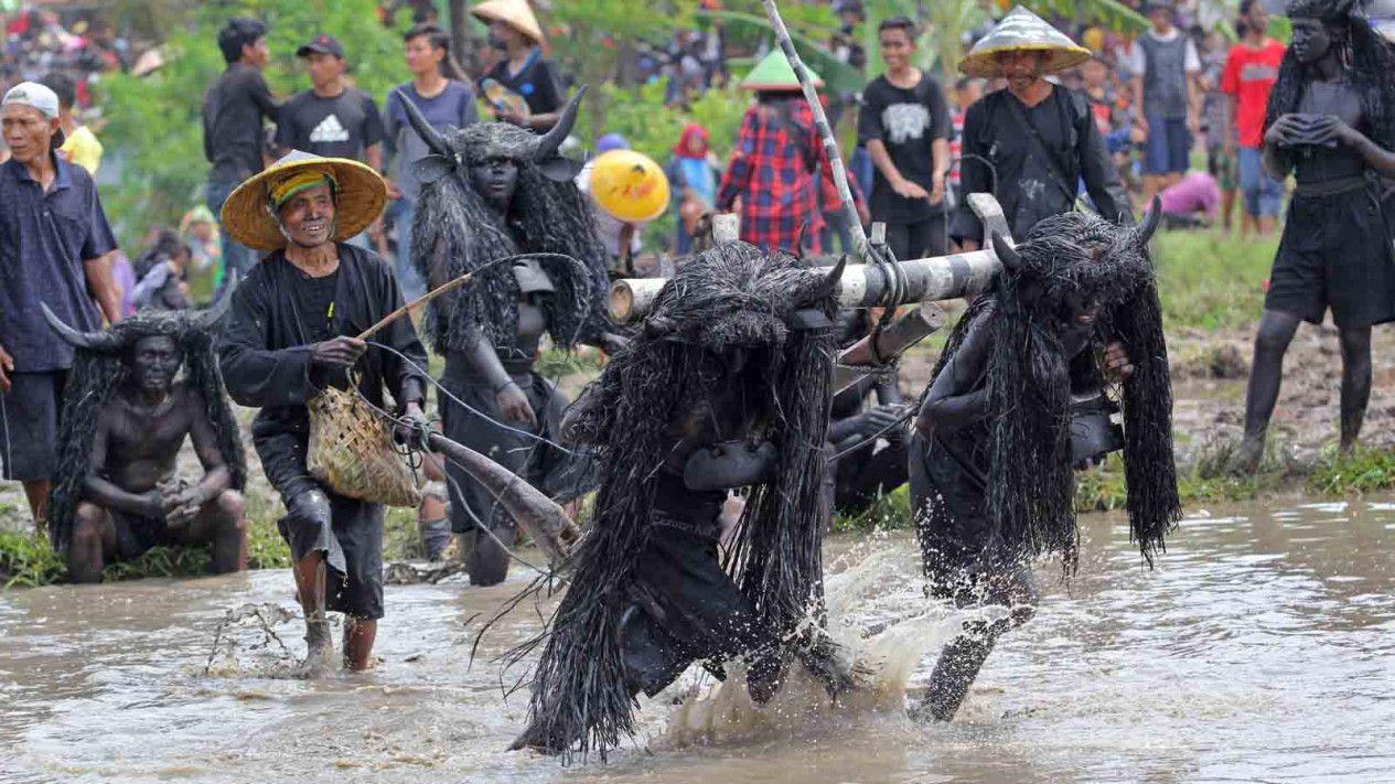 Ritual 'Kesurupan' Kerbau di Banyuwangi yang Masih Lestari