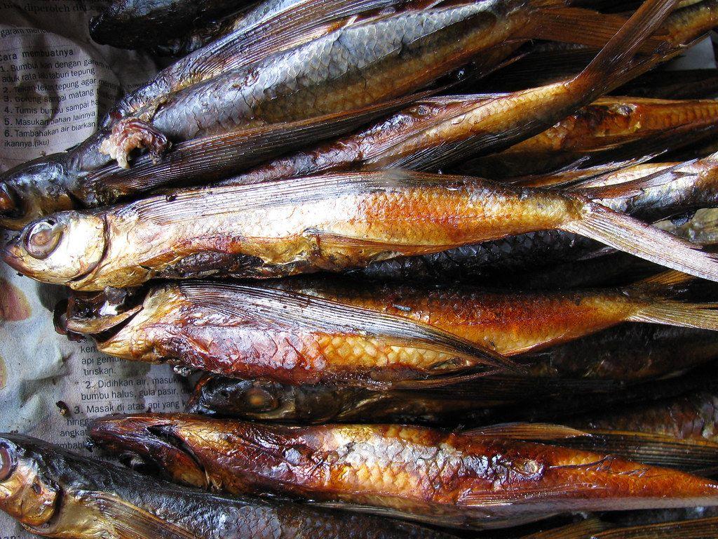 Seksualitas dalam Mantra Pemanggil Ikan Terbang di Galesong