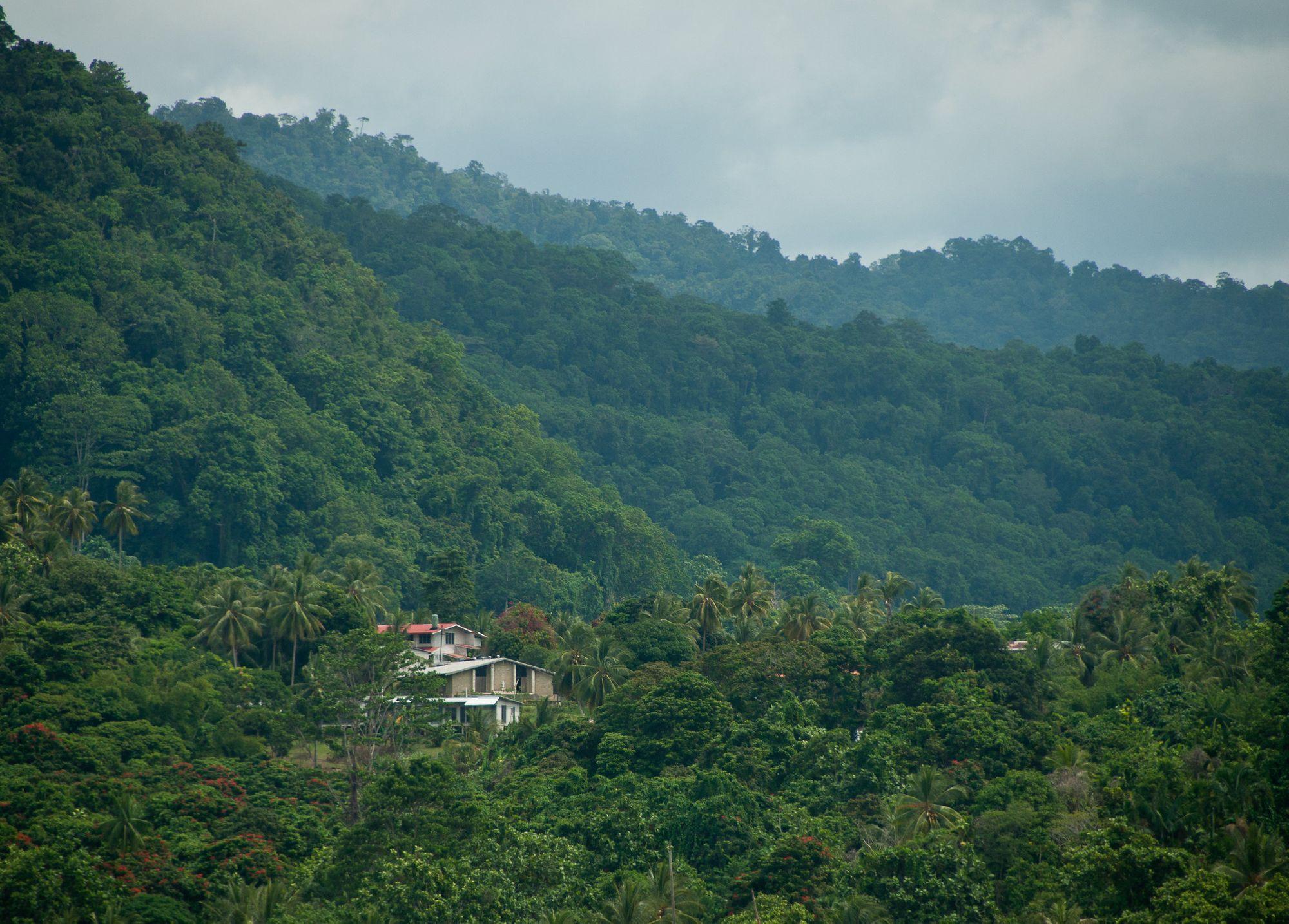 Aturan Adat Sasi, Cara Orang Papua dan Maluku Melestarikan Alam