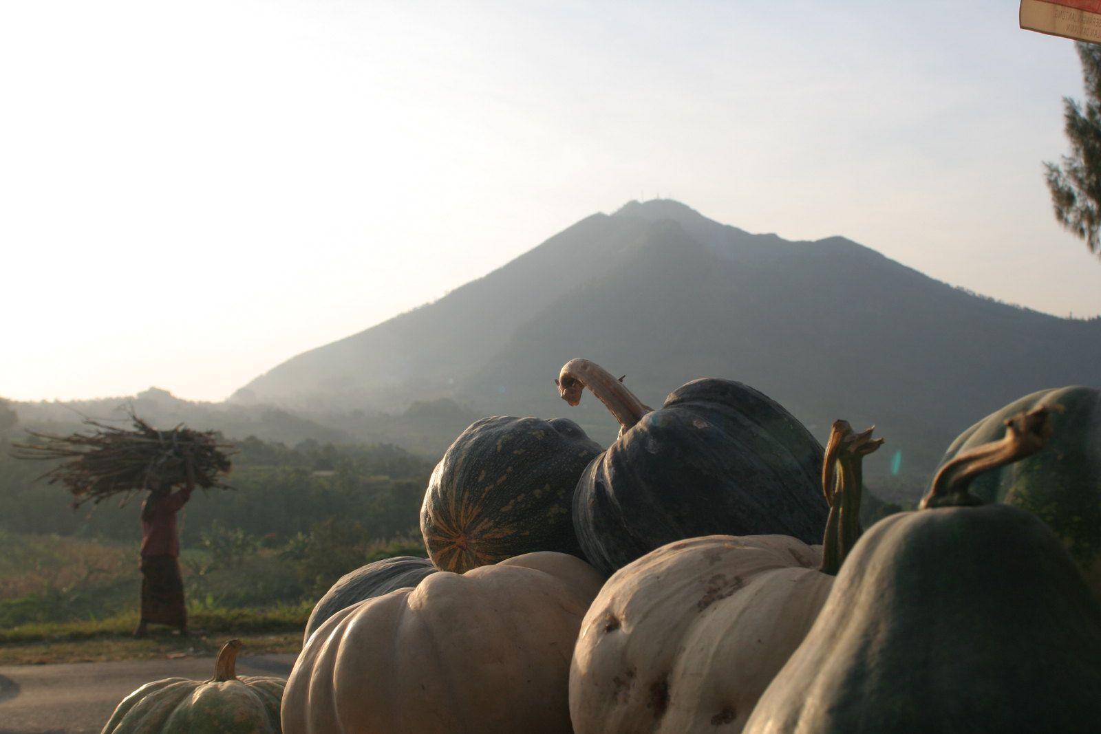 Belajar Melestarikan Seni dari Event Mengelola Gunung di Magelang